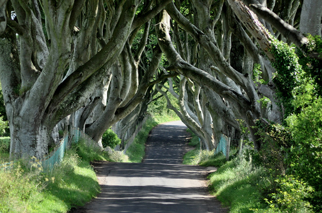 Game of Thrones Day Trip – Stormlands Tour with Quinns